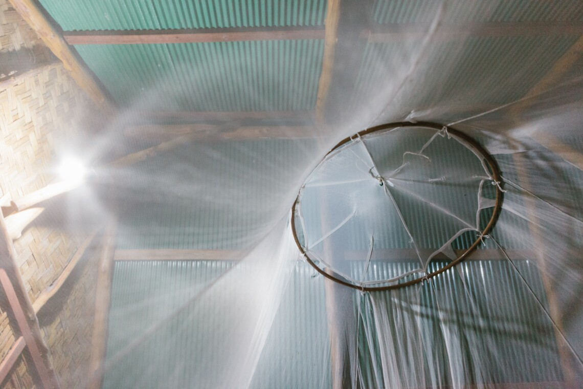 underneath mosquito net