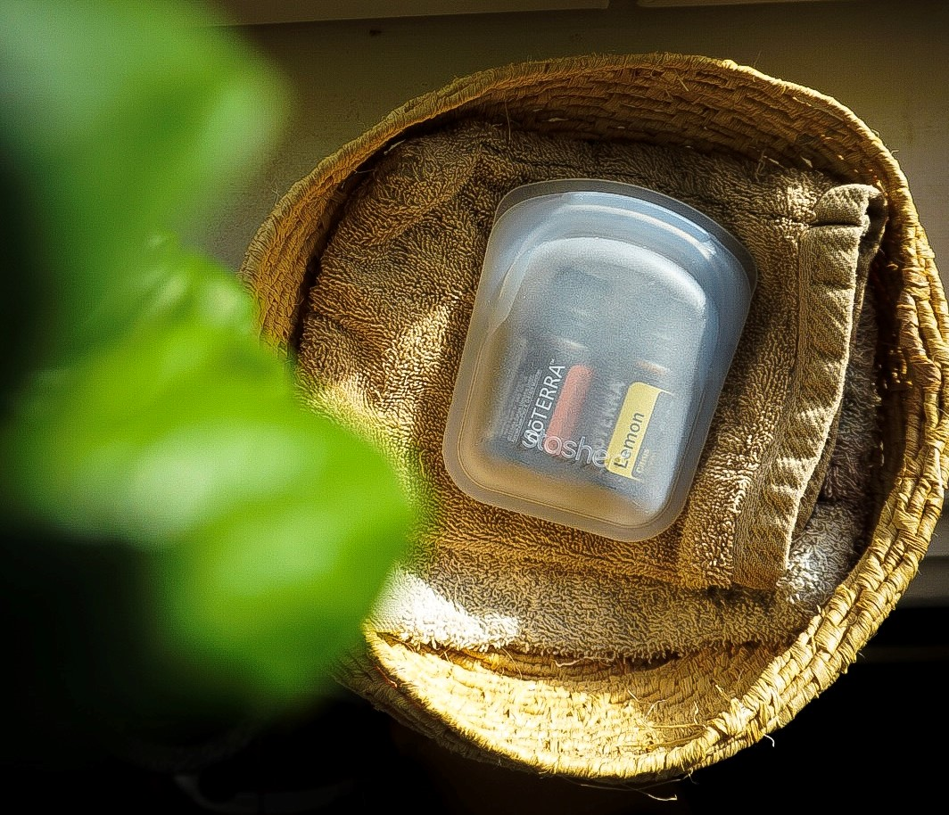 Pocket-sized Stasher bag holding doTERRA essential oils with a blurry house plant in the foreground