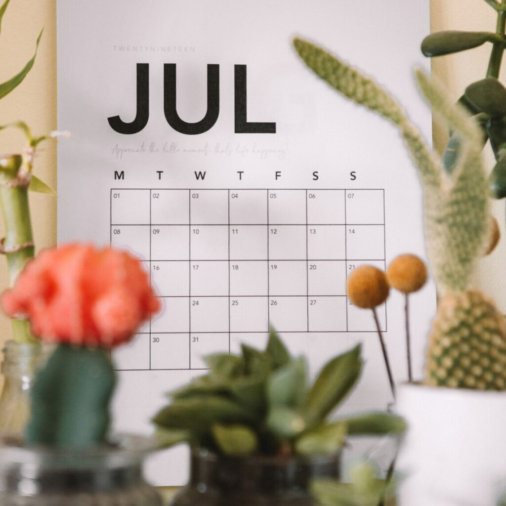 A calendar hangs on a wall in the background, and in front of it sits flowers and plants which are blurred