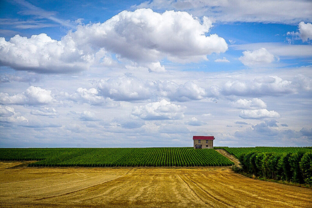 A tiny house sits off in the distance on the horizon. Above the house is a bright blue sky with huge white clouds, and in front of the house are rows of bright green and yellow crops